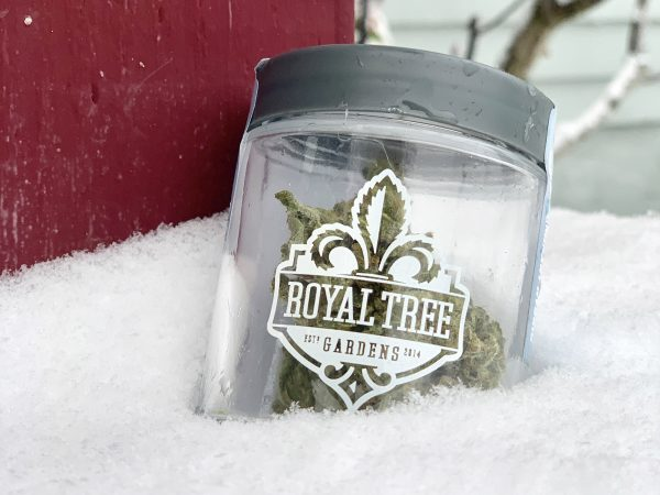 A jar of Royal Tree Gardens set against the snowy outside.
