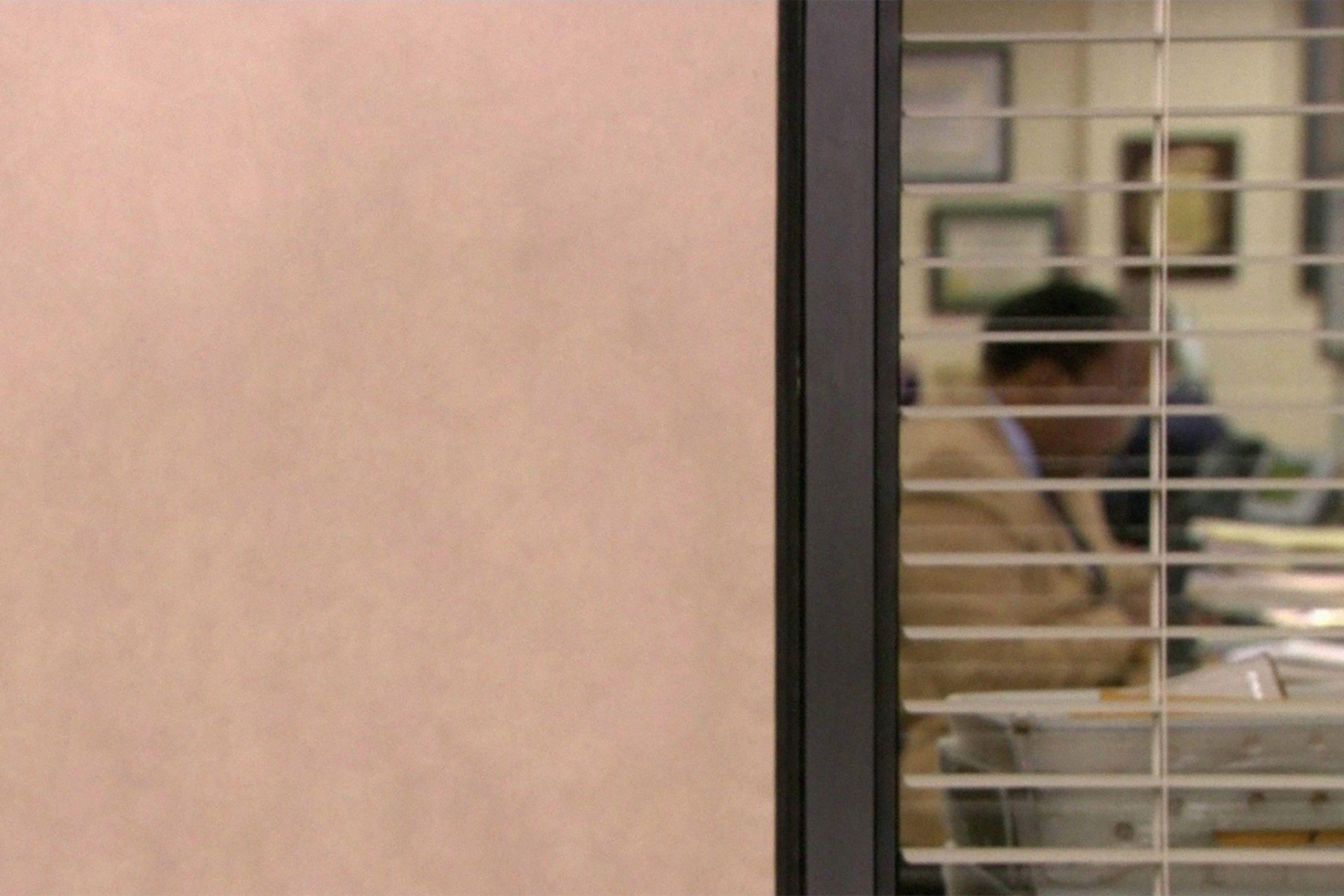 the office zoom meeting background
